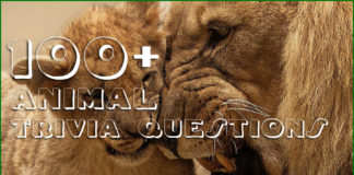100+ Animal Trivia Questions